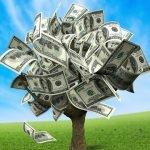 A magic money tree